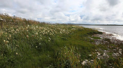 Loch and Meadow in Orkney Islands, Scotland Stock Footage