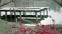 Wooden river dock and red berries. Stock Footage