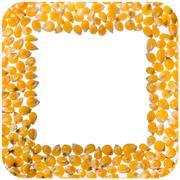 Popcorn kernel square frame - stock photo
