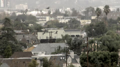 Silhouettes of flying birds Rainy Los Angeles Hollywood Skyline Arkistovideo