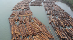 Fraser river lumber. Stock Footage