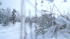 Winter landscape.Forest road covered with snow Stock Footage