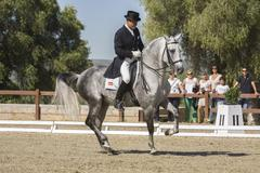 spanish purebred horse competing in dressage competition classic, montenmedio - stock photo