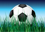 Stock Illustration of soccer ball on grass.