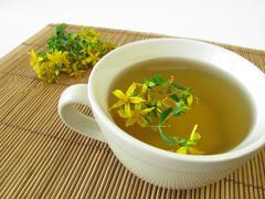 Saint John's wort tea - stock photo