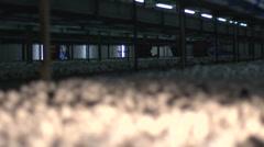 focus pull of mushrooms in mushroom farm - stock footage