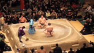 Stock Video Footage of Sumo Competiton with Camera Flashes for Winner