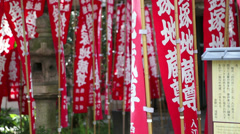 Flags temple Senso-ji Stock Footage