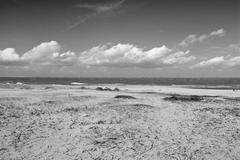 Windy beach Stock Photos