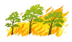 Burning forest trees in fire flames Stock Illustration
