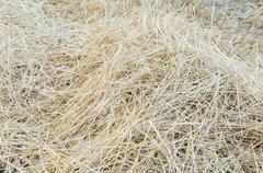Pile of straw Stock Photos