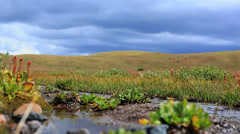 Alpine Spring and Clouds - stock footage