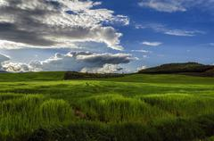 Beautiful and colorful landscape over the fields in Navarra Stock Photos
