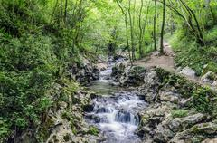 Small and beautiful spring in the forest of Navarra Stock Photos