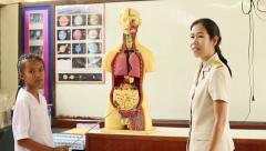 Asian Student During An Anatomy Lesson In School - stock footage