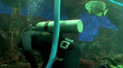 Diver cleans the bottom of a large oceanarium. Stock Footage