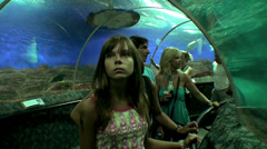 Tourists are in the acrylic-windowed tunnel of oceanarium. Stock Footage