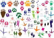 Stock Illustration of paw prints