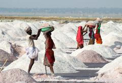 Salt mining on sambhar lake in india Stock Photos