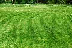 Freshly mowed lawn Stock Photos