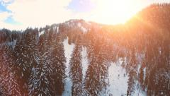 Flying over forest. snow winter landscape. trees woods. sunset sky dusk Stock Footage