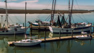 Stock Video Footage of Shrimping Boats docked, aerial view