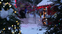 Winter City - Christmas Park - 05 - People, Trees and Lights Stock Footage