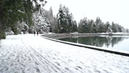 Stock Video Footage of Winter City - Park In Snow - 10 - Forest, Water, People