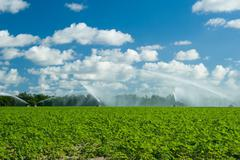 trucks irrigating green field - stock photo