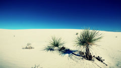 White sands desert new mexico Stock Footage