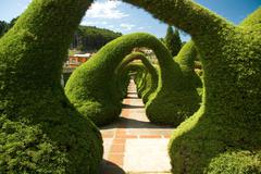 Sculpted garden in costa rica Stock Photos