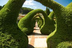 sculpted garden in costa rica - stock photo
