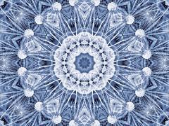 Abstrakti radial kuvio luonnollinen suuri voikukka kukka Piirros