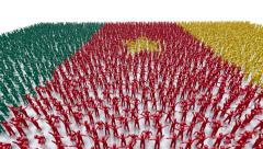 Cameroon Flag Crowd Stock Footage