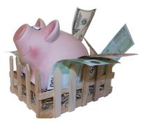 Claustrophobic Piggy bank leaving pigpen on white background - stock photo