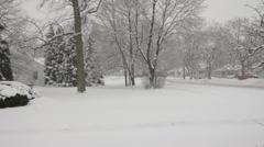Snow Falling Stock Footage
