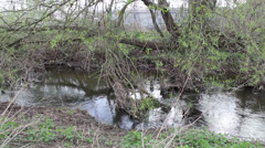 Overgrown River bank and river Stock Footage