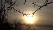 Stock Video Footage of sunset, winter