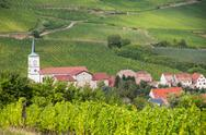 Stock Photo of A beautiful French village in the Alsace with church among vineyards.