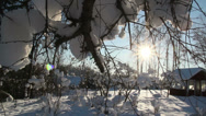 The sun shines so bright on the snow covered area Stock Footage