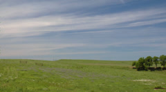 Prairie pasture Stock Footage