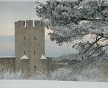 Stock Photo of the unesco world heritage site visby.gn