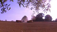 Harvesting of ripe wheat. Stock Footage
