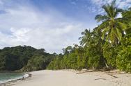 Stock Photo of Playa Manuel Antonio & palm trees