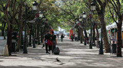 Park walk tree lined street San Juan Puerto Rico HD 0610 Stock Footage