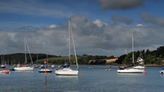 Yachts at Harbor - stock footage