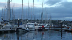 Boats at Harbor Stock Footage