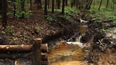 Mountain stream brook Stock Footage