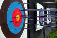 Target archery and many arrow. Stock Photos