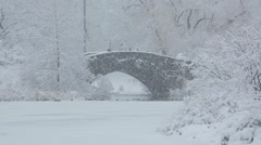 Central Park in New York City in snow the bridge Stock Footage